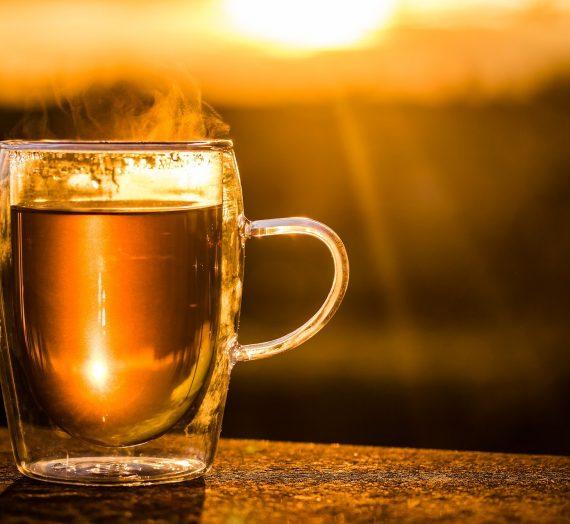 Natürliche (Haus-)Mittel gegen Erkältungen – wie du dich und deine Familie im Corona-Herbst schützen kannst